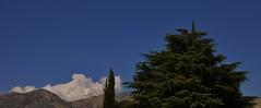 El arbol y las nubes (enrique1959 -) Tags: arbol nubes pino avila martes nwn cipres castillayleon arenasdesanpedro martesdenubes