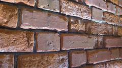 Red Bricks (Katie_Russell) Tags: ireland brick bricks townhall northernireland ni ulster portrush nireland countyantrim norniron coantrim