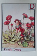 The Double Daisy (DymphieH) Tags: postcards alphabet received