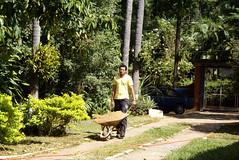 Concreto!! Chcara Tangar (Foto: Naotho) (naothop) Tags: harry potter cu gato linda lingua antena livro gatinho irm concreto pedreiro mostrando