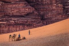 Au pied du mur (Lucille-bs) Tags: orange wadirum sable rocher jordanie dsert dromadaire graphisme moyenorient chamelier