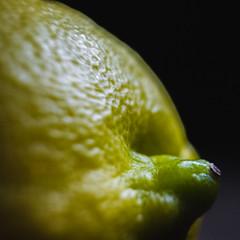 Lemonsnout (Maria Sciandra) Tags: macro texture yellow fruit mexico citrus minimalism limone olympuspenepl1 mariasciandraphotography