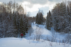 IMG_8875L (v.moreev) Tags: winter snow landscape russia february skitrip backwoods desolateplace kirovregion