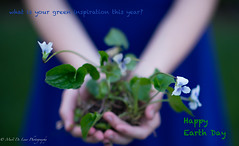earthday-3 (laurybsf) Tags: plant flower nature water drops globe day respect earth violet give planet take organic teach motherearth raindrop protect earthday wrorld