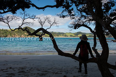 Northland New Zealand (85) (nztramper.com) Tags: new zealand northland