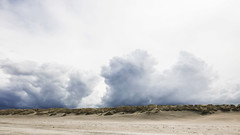 (119/366) Duinen (146/365) (MJ Klaver) Tags: photoaday ameland project365 project366