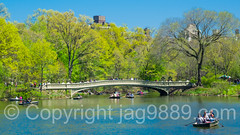 Bow Bridge over The Lake, Central Park, New York City (jag9889) Tags: park nyc newyorkcity bridge usa ny newyork color tree water landscape puente boat spring ship crossing unitedstates outdoor centralpark manhattan unitedstatesofamerica bridges vessel landmark ponte infrastructure pont rowing cp brcke bowbridge nycparks archbridge 2016 publicpark newyorkcitydepartmentofparksrecreation jag9889 20160424