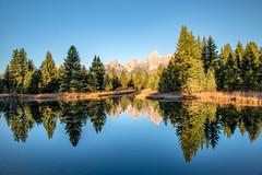 Schwarbacher Landing, Grand Teton (MarkWarnes) Tags: reflection sunrise dawn snakeriver wyoming grandtetons grandteton tetonrange grandtetonnationalpark grandtetonsnationalpark schwabacherlanding beaverpool