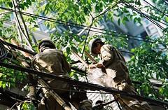 """You did bring the plans...""? (jcbkk1956) Tags: street trees film analog 35mm canon thailand workmen kodak bangkok cables wires thai manual ftb electricians 100mmf28"