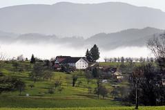 above fog level (claude05) Tags: farm grange winterwithoutsnow freiamt flickrexplore challengeyouwinner kandel1241m glasig budererhof