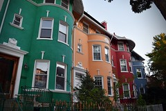 Bright Rows (misskmarshy) Tags: urban color washingtondc dc historic adamsmorgan rowhouse flickrexplore lanierheights nikond5300