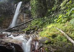 Virginia Falls- Postcards Edge (GlacierNPS) Tags: glaciernationalpark montana nps nationalparks waterfall nature outdoors