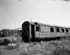 1541 (The Dent.) Tags: mamiya film analog port south 8 australia universal press derelict xtol pirie mnis trix400asa