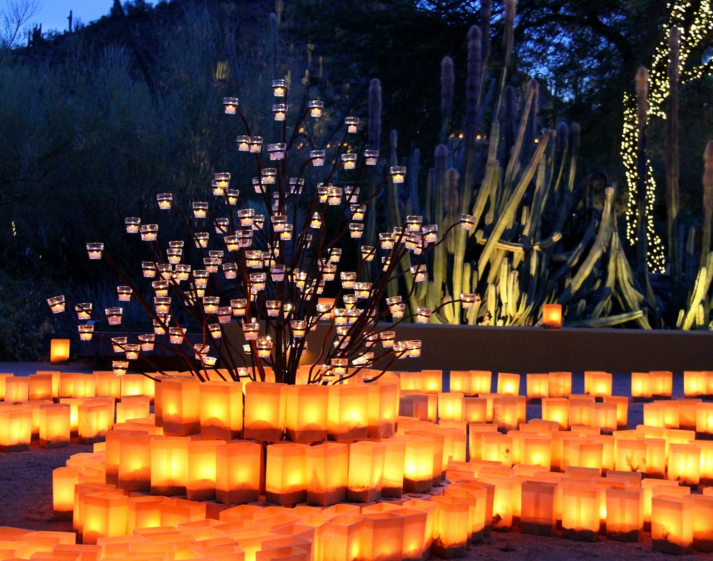 The World 39 S Best Photos Of Garden And Luminaria Flickr Hive Mind