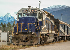 The Biggest Mountaineer! (ian.emerson36) Tags: canada train rockies jasper machine massive 8019 moutaineer