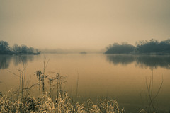 Foggy Day in Blackwell Forest Preserve, DuPage, IL (nianci pan) Tags: park morning mist lake chicago water field rain misty fog rural creek river countryside illinois pond stream sony foggy peaceful tranquility dupage suburb pan blackwellforestpreserve tranquil sonyalphadslr nianci sonyphotographing