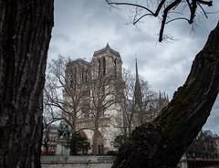Notre Dame de Paris (Xaypp) Tags: paris notredame eglise cathedrale