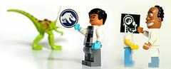 LEGO X-ray (Vanjey_Lego) Tags: dino lego homer minifig minifigs homersimpson minifigure minifigures gallimimus jurassicworld