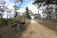 On the Port Fairy to Warrnambool bike trail. (The Pocket Rocket) Tags: cycling seat bikes australia victoria biketrail explore196 portfairytowarrnambool