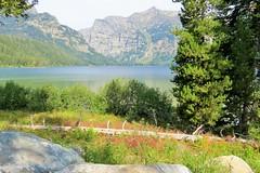 Phelps Lake (Patricia Henschen) Tags: mountains moose jackson wyoming grandtetons tetons preserve naturepreserve grandtetonnationalpark phelpslake laurancesrockefellerpreserve