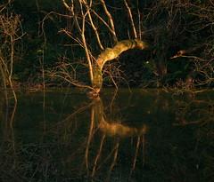 (Rob Hurson) Tags: ireland sunset reflection river spring pentax boyne tamron2875mmf28 comeath pentaxk30 boynenavigation