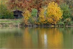 Herbst am Teich 47 (lady_sunshine_photos) Tags: austria europa herbst teich niedersterreich bootshaus oase weinviertel herbstfrbung nexing