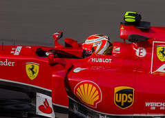 Belgain GP 2014 (2) (nea-designs.com) Tags: mercedes williams f1 mclaren sauber formula1 spa redbull spafrancorchamps tororosso catherham forceindia belgiangp2014