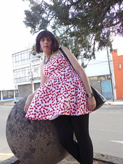 MAYELITA CROSSDRESS (MAYELITA CROSSDRESS) Tags: girls beauty female mexico pretty highheels dress legs outdoor girly makeup guadalajara crossdressing heels makeover miniskirt pantyhose crossdresser crossdress gurl petticoat ladyboy zapatillas calzado minidress mtf beatifull turist gudalajara passable minifalda leggins pantimedias taconesaltos maletofemale boytogirl boyswillbegirls vestidodemujer passablegirl convertidoenchica dehombreamujer esculturadecaballos