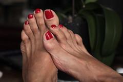 Hannah (IPMT) Tags: red sexy feet foot rojo zoya toes painted hannah cream polish vermelho barefoot pies barefeet pedicure toenails toenail pedi descalza