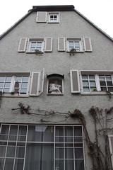House at Hauptstrae 91 in Zell am Main (Bjrn S...) Tags: bayern bavaria franconia franken zell baviera franconie bavire hauptstrase zellammain zellamain hauptstrase91