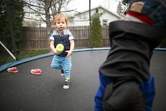 20160428_60113 (AWelsh) Tags: boy evan ny boys kids children fun kid twins child play joshua jacob twin trampoline rochester elliott andrewwelsh 24l canon5dmkiii