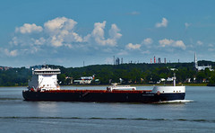 Algoma Harvester (Nicober!!!) Tags: canada river ship quebec great lakes cargo stlawrence lacs stlaurent harvester grands fleuve algoma