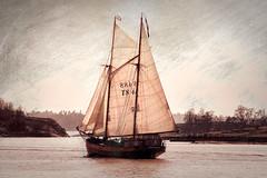 Helsinki (Tuomo Lindfors) Tags: sea water suomi finland boat helsinki sailing ship meri vesi topazlabs purjelaiva textureeffects