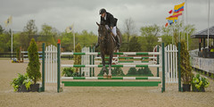 Jumper 5 (William_Doyle) Tags: horses horse cold rain clouds photoshop spring farm north may nj princeton hunter equestrian 2016 skillman topazclarity topazdenoize