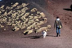 (Giovanni Liotta) Tags: labrador logan etna catania giovanni liotta