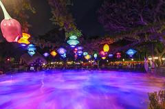 Disneyland: Round and Round (Jessie Chaisson) Tags: colors jessie night photography nikon long exposure alice disneyland teacups wonderland chaisson