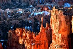 THE ANGEL (Aspenbreeze) Tags: winter snow nature rural utah spires rockformations brcye amphitheather aspenbreeze brycenationalcanyon moonandbackphotography bevzuerlein utallandscapes theangelformation
