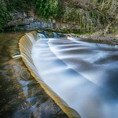 The Weir at Cramond Mill 2 (roseysnapper) Tags: longexposure shadow scotland waterfall moss rocks edinburgh coins circularpolarizer riveralmond cramond wier leefilters nikond810 nikkor1424f28 leebigstopper cramondmill