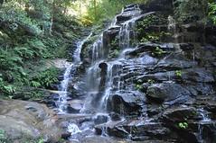 falls along National Pass Trail (davidparratt) Tags: waterfall australia bluemountains nationalpasstrail