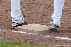 Baseball - Laufer Wölfe - Ingolstadt Schanzer