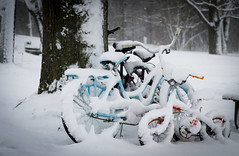 Camping Plans Gone Awry (The Life of Tom) Tags: camping winter snow storm weather bikes bicycles disappointment snowcovered