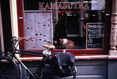 """Im going through changes...."" (morsini1) Tags: leica amsterdam cat fuji slidefilm gato e6 m6 fujichromevelvia50 summicrondr50mmf2 leicam6classic085"