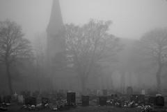 Gloom (davieb123) Tags: urban mist monochrome cemetery graveyard fog 50mm gloom tyneside hebburn canon600d