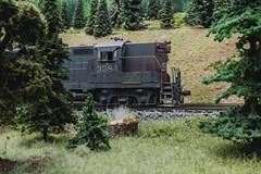 SP 3384 (steamfan1211) Tags: railroad trains locomotives southernpacific hoscale gp9