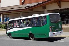 Caio Foz // Mercedes-Benz LO-915 // Lnea 11 (Valdivia) ( JotaBBus) Tags: mercedesbenz caio foz lo915 bldv41