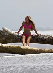 Beach photoshoot (spacecoastsurfer) Tags: ocean woman hot sexy beach girl model photoshoot florida outdoor babe driftwood bikini cocoa brevard
