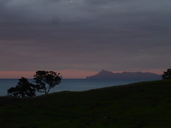 Leigh Sunset (Magryciak) Tags: ocean trip pink camping sunset sea newzealand sky colour tree dark landscape outdoors island northisland 2016