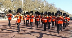 band of the scots guards 20 04 2016 (philipbisset275) Tags: unitedkingdom themall centrallondon cityofwestminster englandgreatbritain bandofthescotsguards 20042016
