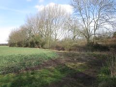 Landscape near Shenfield (John Steedman) Tags: uk greatbritain england unitedkingdom essex shenfield grossbritannien    grandebretagne