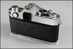 Yashica TL Electro X (04) (Hans Kerensky) Tags: lens 50mm display tl x electro yashica 117 yashinondx